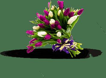 Réseau de Fleuristes-Secteurs d'Activités