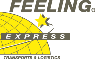 Feeling Express - logo